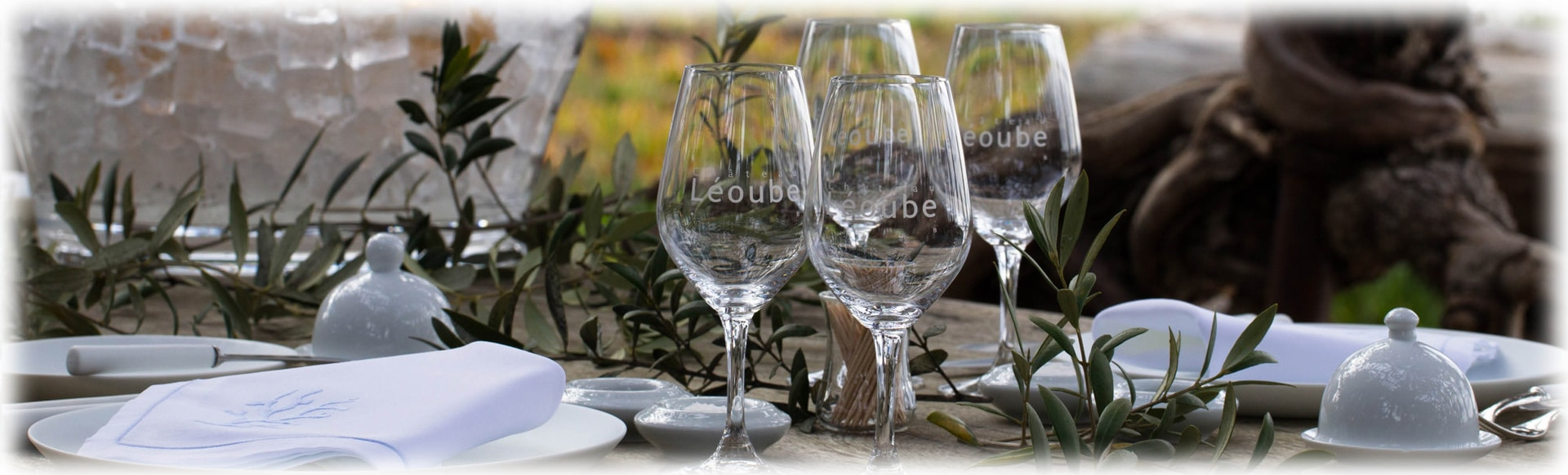 LEOUBE offre speciale verres spiegelau